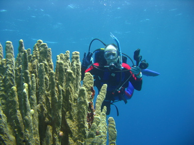 Gil diving with hard coral on Kosrae